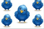 twitter-birds[1]